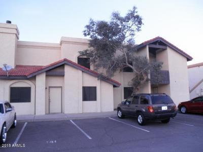 Apache Junction, Mesa Multi Family Home For Sale: 2650 McKellips Road #241