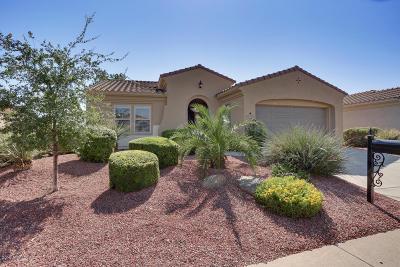 Sun City West Rental For Rent: 22921 N Las Positas Drive