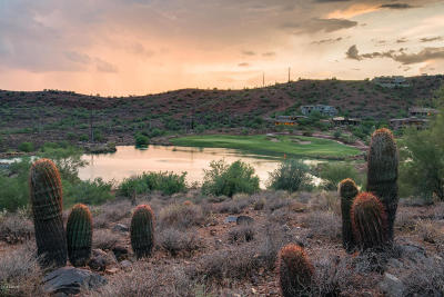 Fountain Hills Residential Lots & Land For Sale: 9120 N Horizon Trail