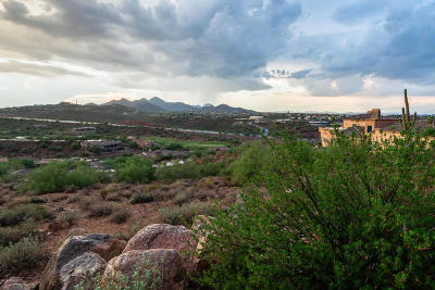 Fountain Hills Residential Lots & Land For Sale: 10008 N Canyon View Lane