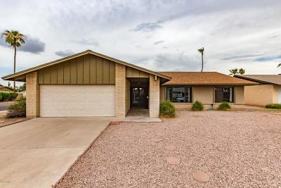 Tempe  Single Family Home For Sale: 4505 S Juniper Street