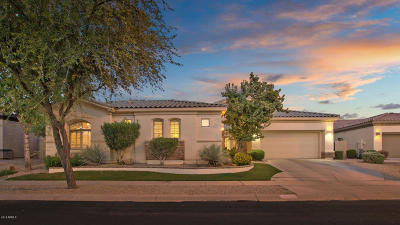 Gilbert Single Family Home For Sale: 4633 S Ranger Court