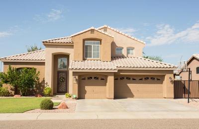 Glendale AZ Single Family Home For Sale: $419,900