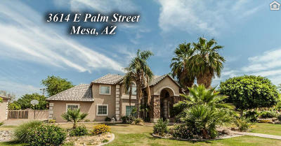 Mesa Single Family Home For Sale: 3614 E Palm Street