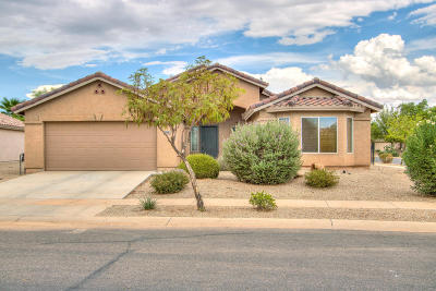 Casa Grande Single Family Home For Sale: 150 S Lucia Lane