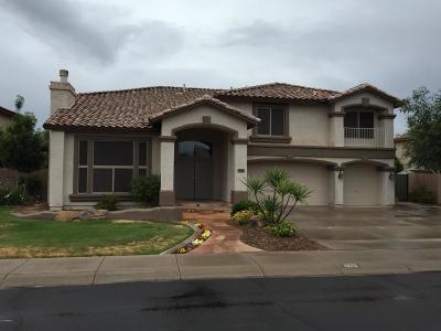 Chandler Single Family Home UCB (Under Contract-Backups): 1370 E San Carlos Way
