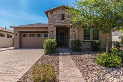 Chandler Single Family Home For Sale: 4187 E Glacier Place