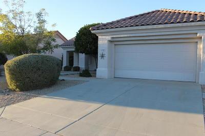 Sun City West Rental For Rent: 14422 W Via Tercero Drive
