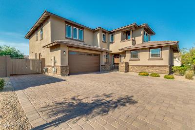 Litchfield Park Single Family Home For Sale: 14705 W Reade Avenue