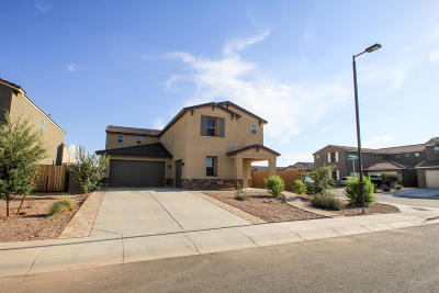 San Tan Valley Single Family Home For Sale: 1295 W Blue Ridge Drive