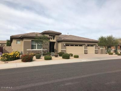 Phoenix Single Family Home For Sale: 22414 N 36th Way