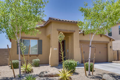 Sun City West Single Family Home For Sale: 22624 N Candlelight Court