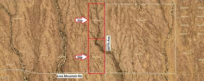Surprise Residential Lots & Land For Sale: 18700 W Lone Mountain Road