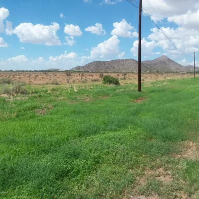 Casa Grande Residential Lots & Land For Sale: N Overfield Road