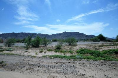 Laveen Residential Lots & Land For Sale: 3211 W Olney Avenue