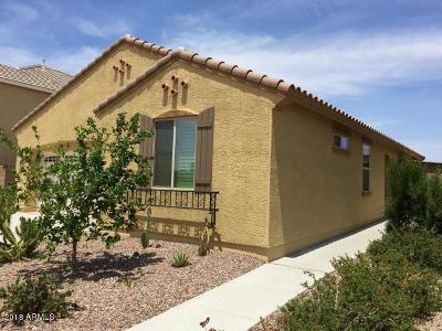 Queen Creek Rental For Rent: 21222 E Cherrywood Drive