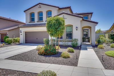 Surprise Single Family Home For Sale: 14875 W Surrey Drive