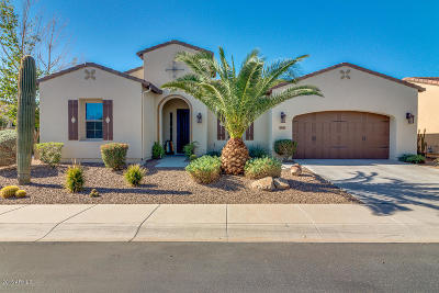 San Tan Valley Single Family Home For Sale: 1645 E Alegria Road