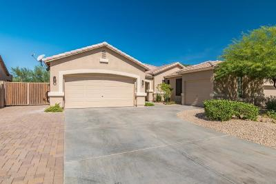 Cave Creek Single Family Home For Sale: 32810 N 40th Place