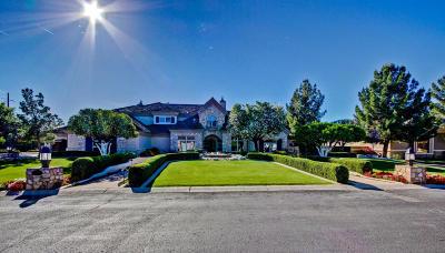 Mesa Single Family Home For Sale: 622 N Miramar