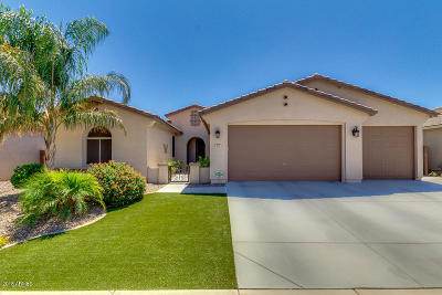 Queen Creek Single Family Home For Sale: 503 W Yellow Wood Avenue