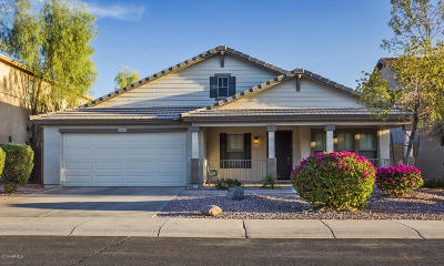 Avondale Single Family Home For Sale: 11569 W Cocopah Street