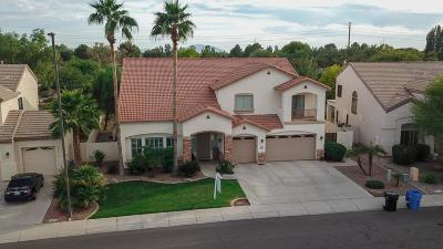 Gilbert Single Family Home For Sale: 3425 E Mockingbird Drive