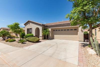 Gilbert Single Family Home For Sale: 4056 E Donato Drive