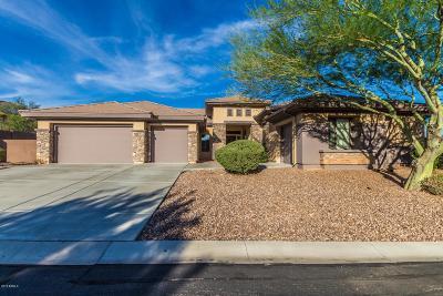 Phoenix Single Family Home For Sale: 40703 N Bradon Way