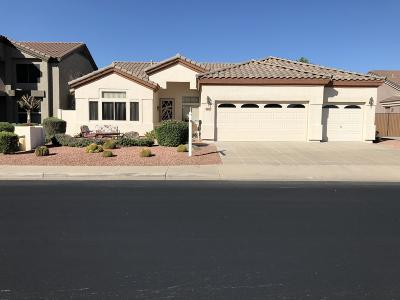 Chandler, Fountain Hills, Gilbert, Mesa, Paradise Valley, Queen Creek, Scottsdale, Gold Canyon, San Tan Valley Single Family Home For Sale: 2210 S Duval