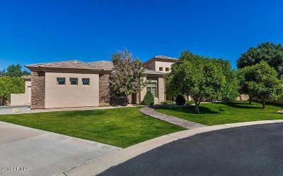 Mesa Single Family Home For Sale: 3950 E McLellan Road #9