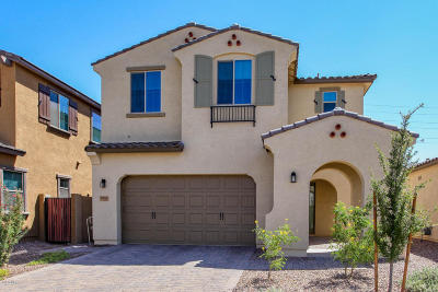 Chandler Single Family Home For Sale: 2885 E Aloe Place