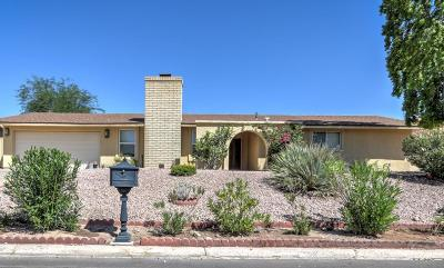 Fountain Hills Single Family Home For Sale: 17406 E Caliente Drive