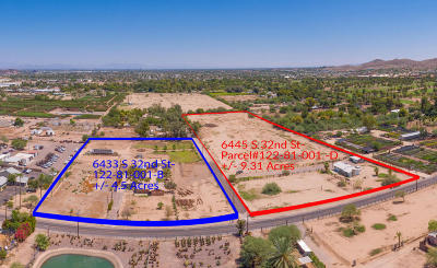Phoenix Single Family Home For Sale: 6433 S 32nd Street