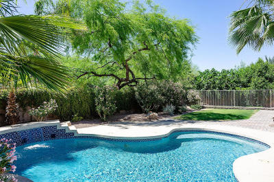 Cave Creek Single Family Home For Sale: 27822 N 47th Street