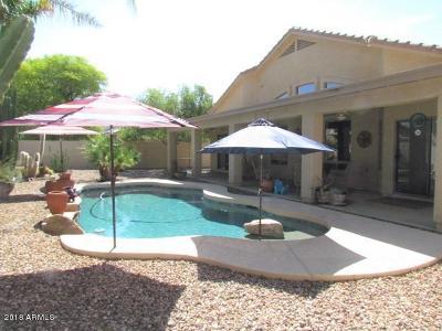 Gilbert Single Family Home For Sale: 3680 E Del Rio Street