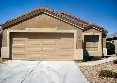 Queen Creek Single Family Home For Sale: 2270 W Camp River Road