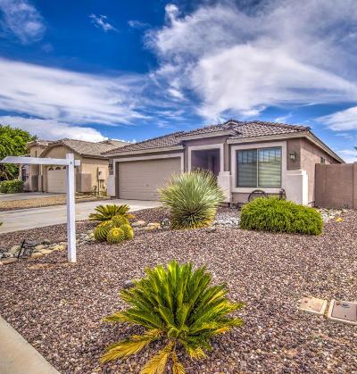 San Tan Valley Single Family Home For Sale: 2783 E Cowboy Cove Trail