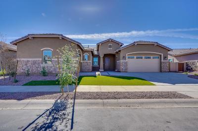 Queen Creek Single Family Home For Sale: 22367 E Desert Spoon Drive