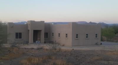 Phoenix Single Family Home For Sale: 1535 W Cloud Road