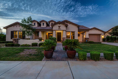 Litchfield Park Single Family Home For Sale: 14606 W Village Parkway