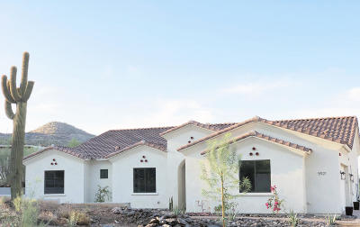 Cave Creek Single Family Home For Sale: 5921 E Carriage Drive