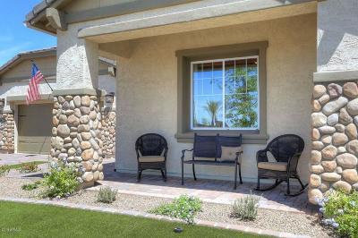 Mesa Single Family Home For Sale: 10711 E Meseto Avenue