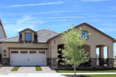 Mesa Single Family Home For Sale: 10606 E Nido Avenue