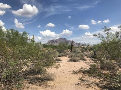 Residential Lots & Land For Sale: E Saddle Butte Street