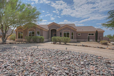 Cave Creek Single Family Home For Sale: 4809 E Palo Brea Lane