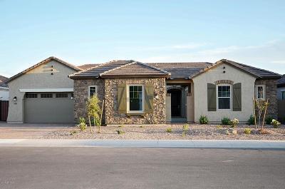 Chandler Single Family Home For Sale: 3561 E Aquarius Place