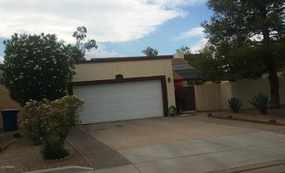 Chandler Single Family Home For Sale: 1908 N Jay Street