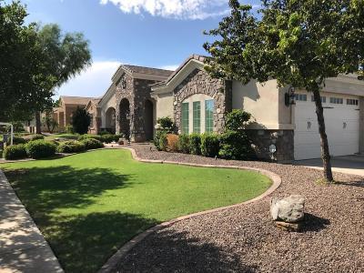 Queen Creek Single Family Home For Sale: 19691 E Julius Road