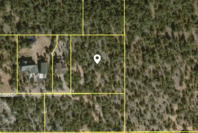 Overgaard Residential Lots & Land For Sale: 3226 Trailblazer Drive